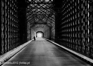 Zdjęcie użytkownika kondziu2012 (mężczyzna), Lipie