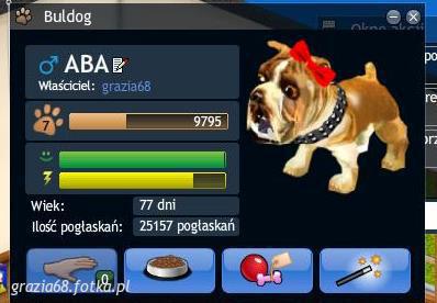 Zwierzak: konkurs - Smeet - zdjęcie 11