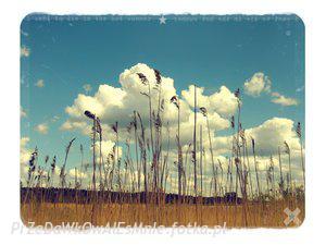 Obrazki na Bloga ;] - Chemiczny świat, pachnący szarością. - zdjęcie 96
