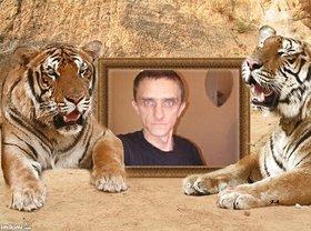 Najładniejsze zdjęcie użytkownika tygrys1974 - Tigers monastery in Thailand - 2zxD0-ZbdB - normal