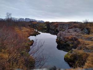 Zdjęcie użytkownika Mikepajson (mężczyzna), Reykjavík