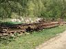 Elbląg - All - Elbląg - zdjęcie 24221397