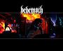 Fotki klanowe/zespołów - Rock/Metal - zdjęcie 24865712