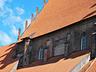 foto.day janusz - Elbląg - zdjęcie 24935335