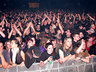 Na samym środku zdjęcia, ten pan w koszuli w kratkę, to ja ;d //Punky Reggae Live 2010 - Wrocław