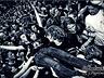 Nasze fotki - Rock/Metal - zdjęcie 48824660