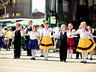 Dni Elbląga 2010 - Elbląg - zdjęcie 52485773