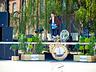 Dni Elbląga 2010 - Elbląg - zdjęcie 52486127