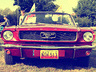 FORD MUSTANG ROK PROD 1966