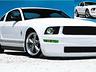 Mustang,jpg copy