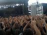 Sonisphere 2010 - Rock/Metal - zdjęcie 66839313