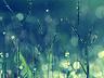 Obrazki na Bloga ;] - Chemiczny świat, pachnący szarością. - zdjęcie 70317049