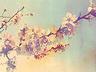 Obrazki na Bloga ;] - Chemiczny świat, pachnący szarością. - zdjęcie 70317103
