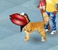 Buziak dla psiaka:P