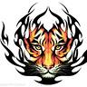 tygrys1974